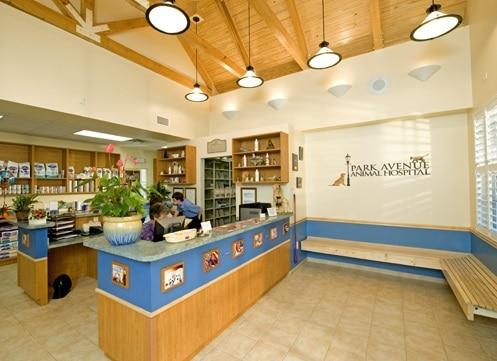 Park Ave Animal Hospital